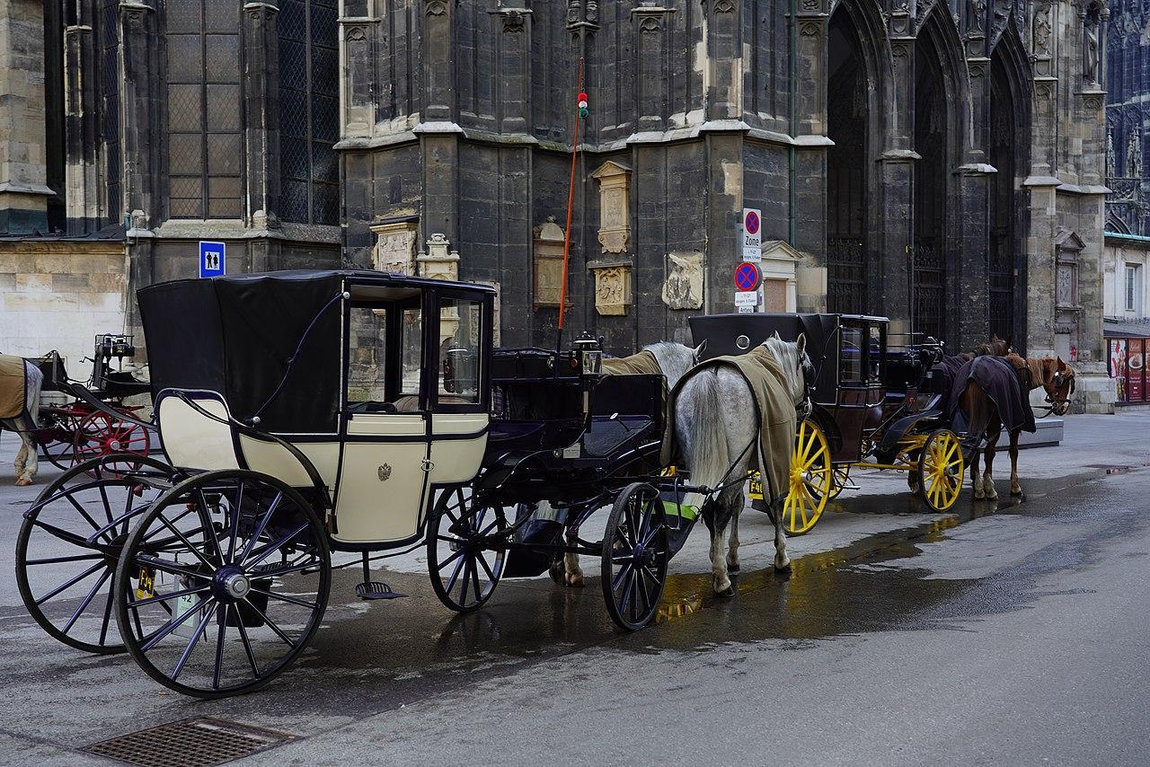 Fiaker vor Stephansdom in Wien - Hochzeitsbräuche aus aller Welt